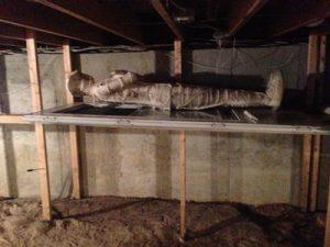 Connecticut Mummy
