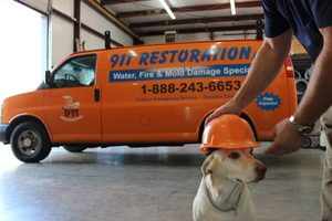 911 Restoration Pup Ready to Help Clean up Water Damage