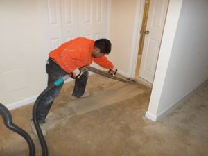 A Technician Cleaning Carpet Water Damage